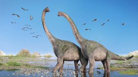 Couple of Brachiosaurus altithorax and a flock of Pterosaurs in a scenic Late Jurassic landscape. Pair of giant sauropods walking through water and a swarm of Stock Photo