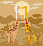 Pair of giraffes. Very enamored, in one moon-lit night in the African savannah Royalty Free Stock Photos