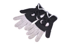 Pair of gloves Royalty Free Stock Images