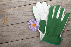 Pair of gloves and flower Stock Photography