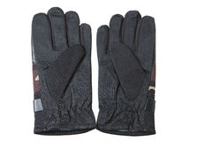 Pair of gloves for hunting. And fishing on a white background Stock Image