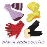 Pair of gloves, scarf and cap for woman Royalty Free Stock Images