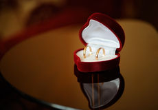 Pair of gold wedding rings in the box Royalty Free Stock Photo