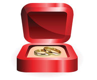 A pair of gold wedding rings Stock Photography