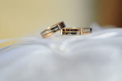 Pair of gold wedding rings on a white pillow Stock Photography