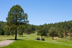 Pair of golf carts on an Arizona course Royalty Free Stock Images