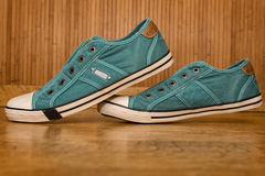 Pair of green canvas sneakers Stock Images