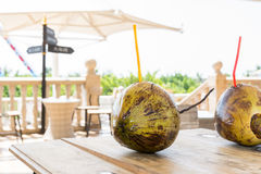 A pair of green coconuts with straw Royalty Free Stock Image