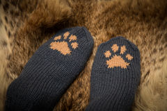 Pair of a hand knitted woolen socks with a cat paw pattern. On fur background royalty free stock photography