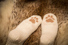 Pair of a hand knitted woolen socks with a cat paw pattern Royalty Free Stock Images