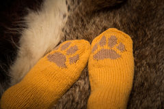 Pair of a hand knitted woolen socks with a cat paw pattern. On fur background stock photo