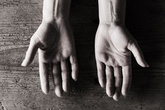 Pair of hands Royalty Free Stock Image