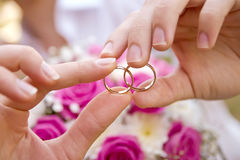 Pair of hands with wedding rings Royalty Free Stock Photo