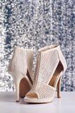 Pair of high heel shoes Stock Photos