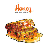 Pair of honeyed honeycombs isolated on white background Royalty Free Stock Photography
