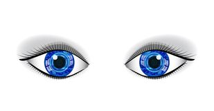 Pair of human blue eyes. Royalty Free Stock Image