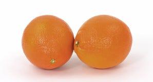 Pair of Hybrid Tangelo Fruit Royalty Free Stock Image