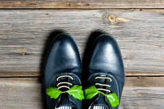 Pair of italian shoes Stock Photos