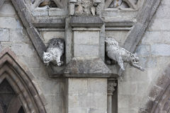 Pair of jaguar gargoyles on the Basilica del Voto Nacional Stock Photo