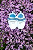 Pair of kids white footwear on a bush. Of small purple flowers. Top view. Copy space for text stock photo