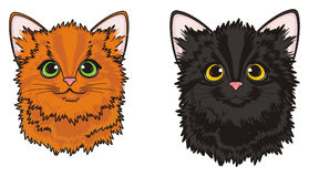 Pair of kittens Royalty Free Stock Images