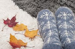 Pair of knitted socks with snowflakes and colorful autumn leaves of maplle Royalty Free Stock Photos