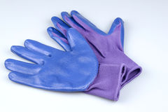 A pair of ladies blue and purple gardening gloves on white Stock Photography