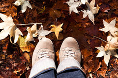 Pair of leather boots and yellow leaves Stock Photography