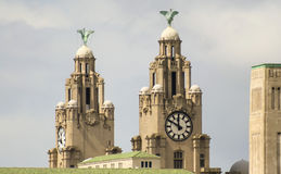 A Pair of Liver Birds on the Royal Liver Building Royalty Free Stock Photos