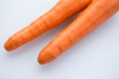 Pair long fresh raw carrot on a plastic cutting board is white color. Royalty Free Stock Image