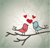 Pair of love birds Royalty Free Stock Photo