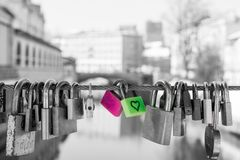Pair of love locks Stock Image