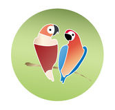 Pair of lovebirds Stock Images