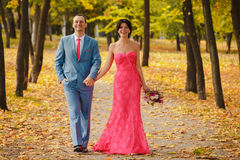 Pair of lovers walking in a colorful forest. stock image