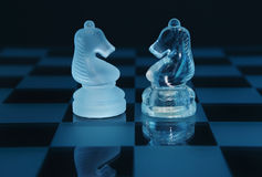 Pair of chess knights partnership. Pair of luxury blue crystal chess pieces, knights on a board, working together / partnership concept royalty free stock photos