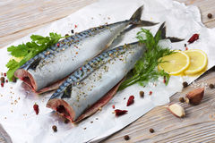 Pair mackerels with spices on the foil for baking Stock Photography