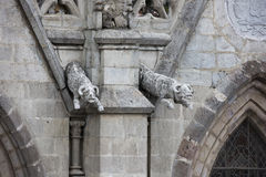 Pair of male goat gargoyles on the Basilica del Voto Nacional Royalty Free Stock Photography