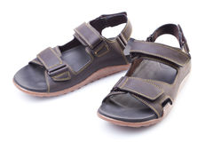 Pair of male summer sandals  on white Royalty Free Stock Image