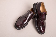 Pair of man brogues shoes Stock Image