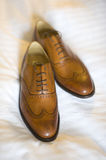 Pair of mens brogue shoes. A pair of new mens brogue shoes in brown Royalty Free Stock Photography