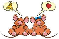 Pair of mice sleep together and dream of a different Stock Images