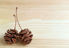 Pair of Natural Dry Tiny Pine Cones on Light Brown Wooden Table, with Free Space for Design Royalty Free Stock Photos