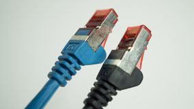 Pair of network cables. Closeup with white background royalty free stock photo