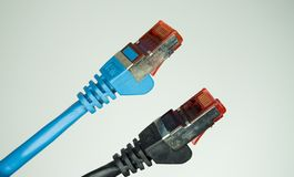 Pair of network cables. Closeup with white background stock images