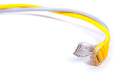 Pair of network LAN cables Royalty Free Stock Photography