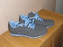 A pair of new sneakers on the cabinet. Gray sneakers. With blue laces royalty free stock image