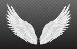 Free Pair Of Beautiful White Angel Wings Isolated On Transparent Background, 3D Realistic Vector Illustration. Spirituality Royalty Free Stock Photography - 182174457