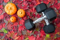 Free Pair Of Crossed Dumbbells On A Rustic Wood Background Covered In Fall Color Of Red, Green, Yellow, And Orange Maple Leaves, With C Royalty Free Stock Images - 159647479