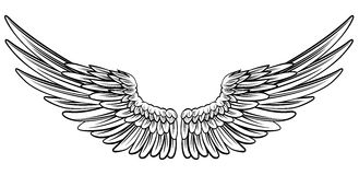 Free Pair Of Spread Wings Royalty Free Stock Images - 82395059