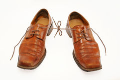 Pair of old male shoes with the connected laces. Isolated on white background Royalty Free Stock Photo